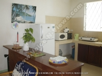 apartment_villa_brigitte_2_mauritius_kitchen.jpg