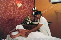 4_star_hotel_indian_resort_hotel_spa.jpg