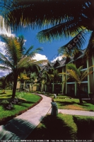 4_star_hotel_sands_resort_hotel_garden.jpg