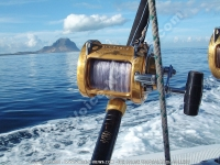 big_game_fishing_reel_and_morne_mountain_view.jpg