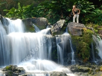 guest_house_eureka_house_mauritius_waterfall_view.jpg