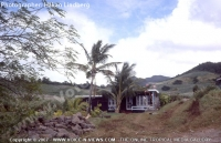 house_in_the_middle_of_sugar_cane_field_in_fron_of_mountain_range_mauritius.jpg