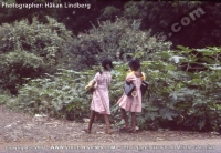 young_girls_going_to_school_in_mauritius_in_the_year_1977.jpg