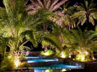 view_of_the_palms_trees_in_the_evening_premium_villa_pereybere_mauritius_ref_16.jpg