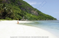 sainte_anne_resort_seychelles_guest_walking_on_the_beach.jpg