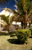 2_star_hotel_klondike_hotel_garden_view_with_palm_trees.jpg