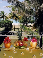 bed_and_breakfast_noix_de_coco_mauritius_balcony_view.jpg